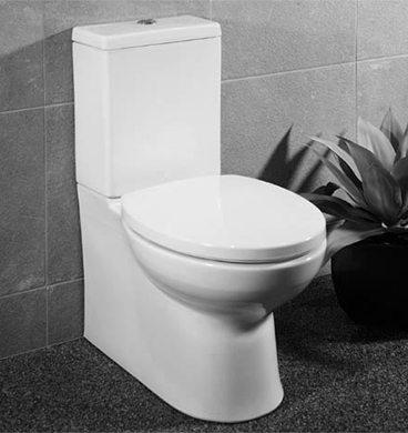 Parisi Envy MKII Back to Wall Toilet Suite soft close seat. Parisi Envy MKII Back to Wall Toilet Suite soft close seat
