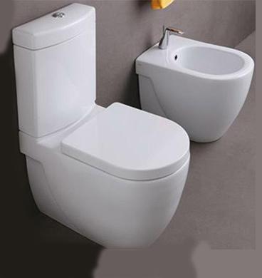 nicole toilet with bidet